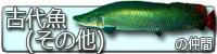 古代魚(その他)